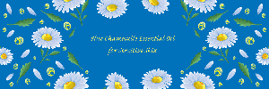 Blue-Chamomile-Oil2