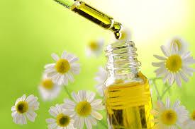 chamomila_oil