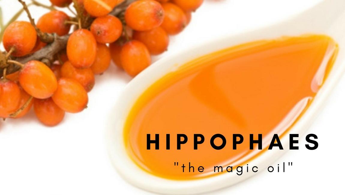 hippofaes-oil